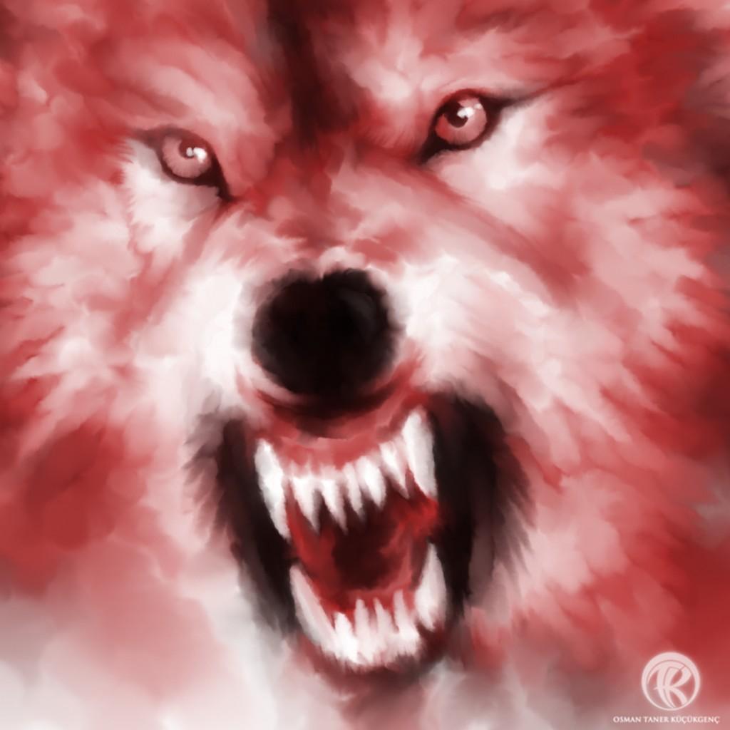 WOLF ALPHA Detail